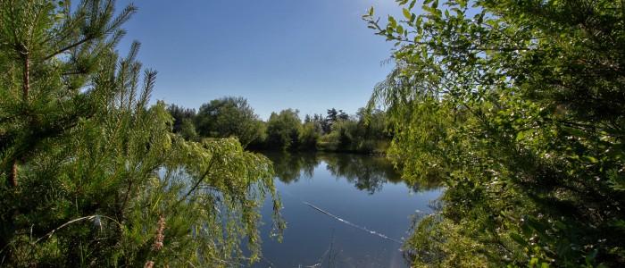 L'étang est accessible par les 2 chalets.
